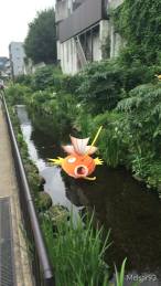 I thought this was funny because there are real carp in this stream too.